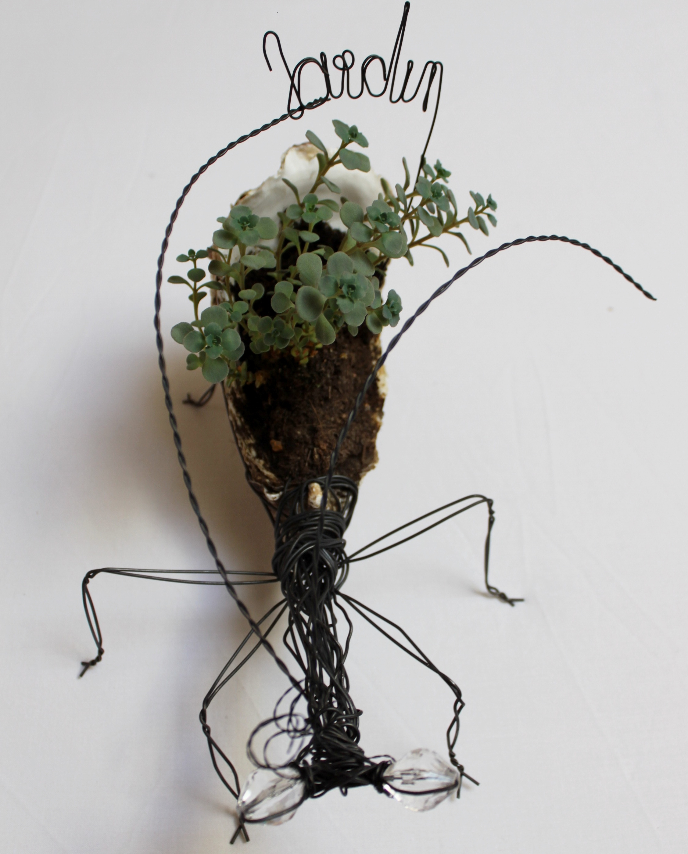 Insecte en fil de fer
