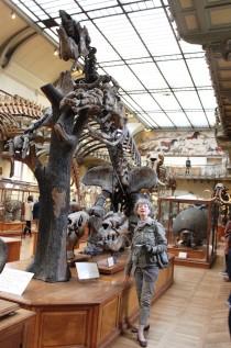 Fossile d'Ours géant, regardez la taille de sa palluche....